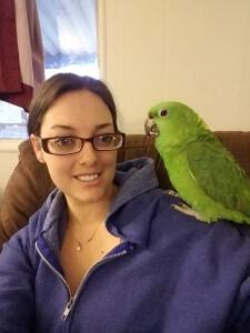 Kat Hall Pet sitter