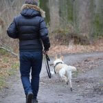 Dog ownership linked to lower mortality
